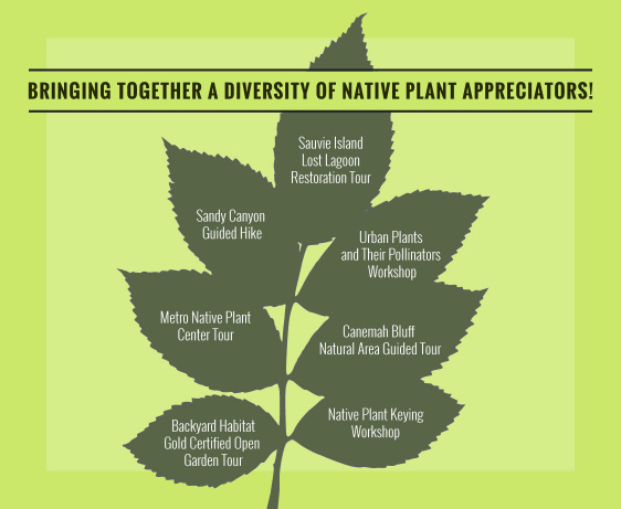 native-plants-pdx-gray