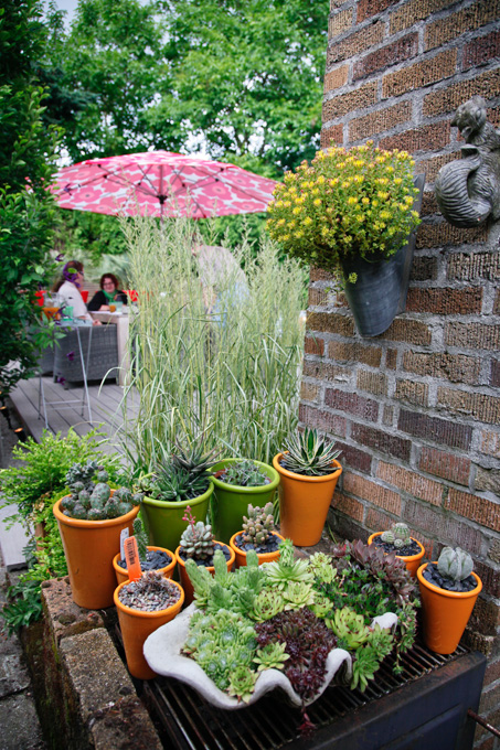 Potted plants are great cover for an outdoor grill.