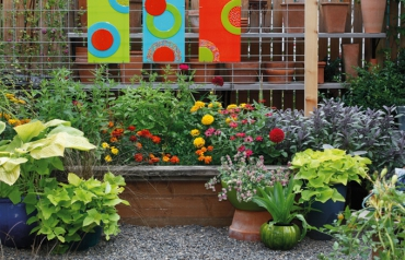 Tips for container gardening in Oregon