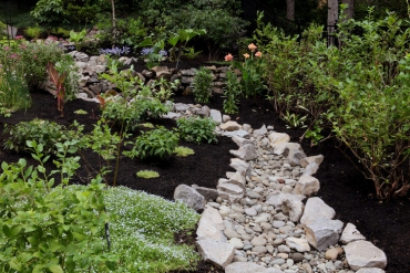 Transforming A Boggy Muddy Mess into a Beautiful Side Garden