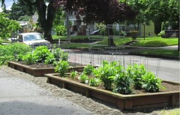 3 Steps to Turn Your Parking Strip into a Garden