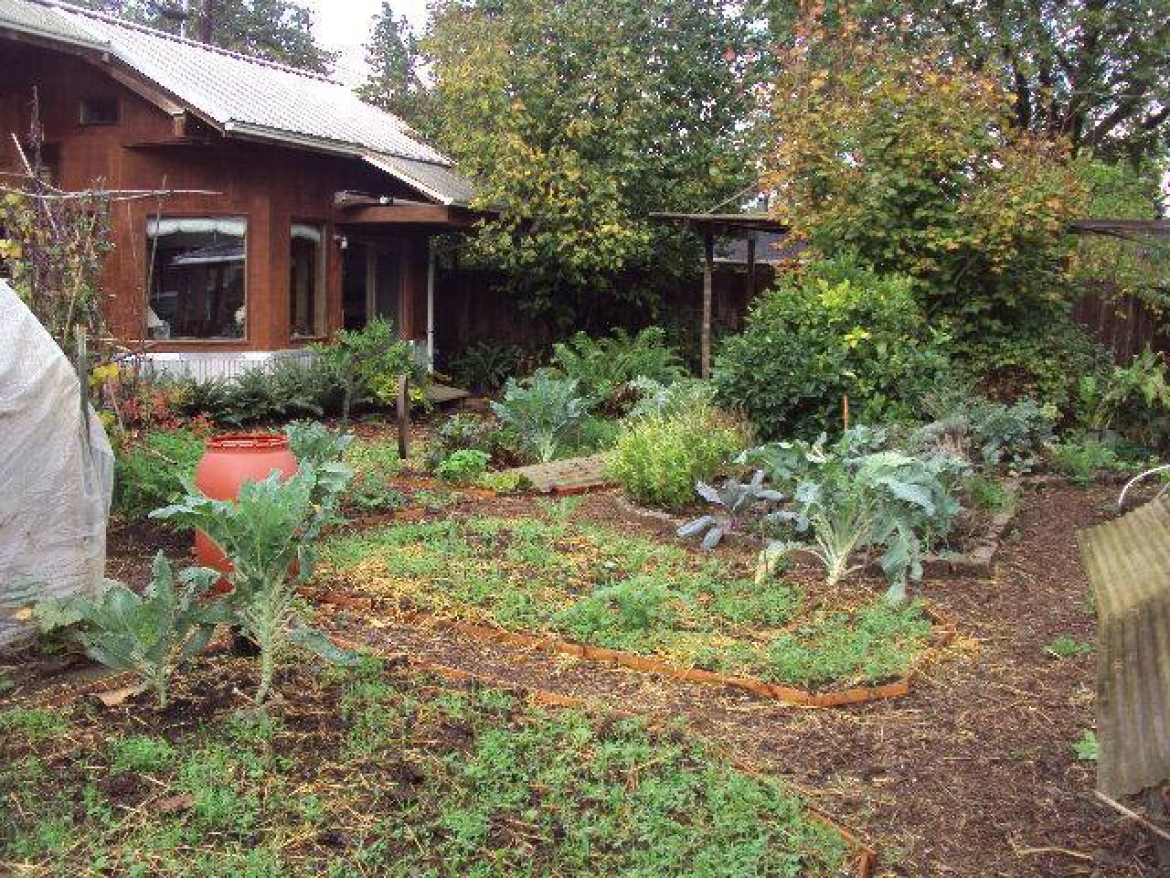 Permaculture and the Future of Neighborhoods